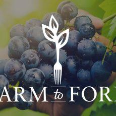 INDSEV-16002 Farm to Fork July Web 1170x660